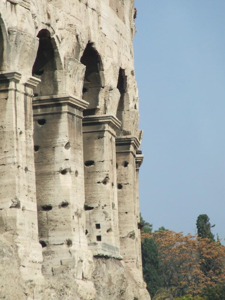 The colosseum by Flavia Di segni