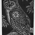 Magic Owl by craftyhag