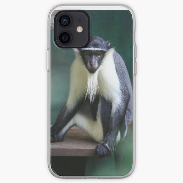 Critically Endangered Roloway Monkey Gifts iPhone Soft Case