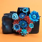 Surveillance Camera : Eyed Flowers Peeking out of a Camera | Surrealistic Sculpture by Stephanie KILGAST