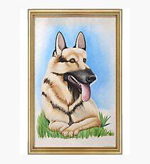 Lámina fotográfica Su siempre soleado - Hitlers Dog