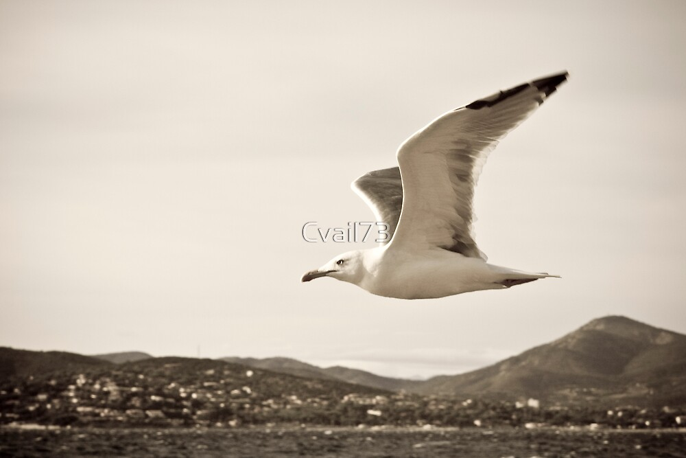 Against the wind by Cvail73