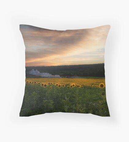 Sunset over a field of Sunflowers Throw Pillow