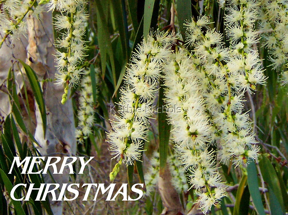 Melaleuca Christmas Card by Kathie Nichols
