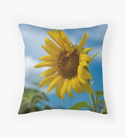 Sunflower and Blue Skies Throw Pillow