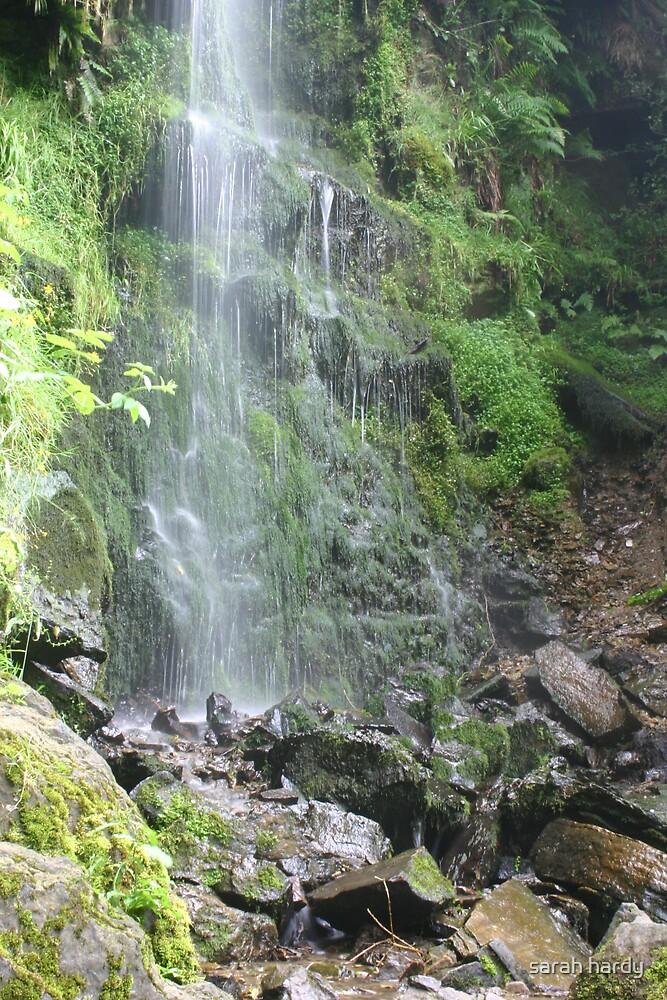 waterfall by sarah hardy