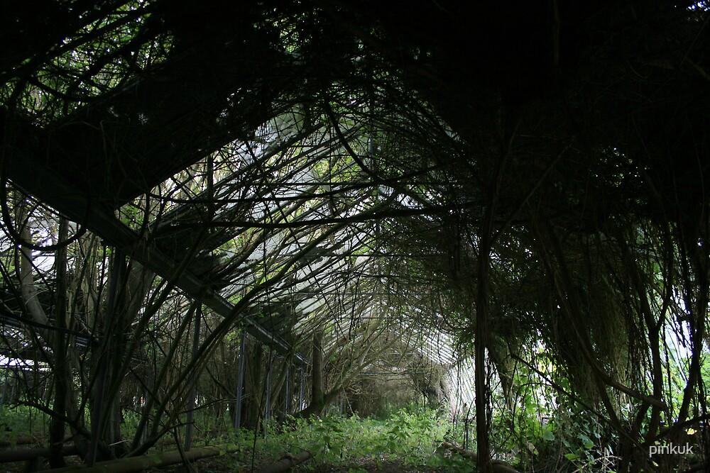 Green house 4 by pinkuk