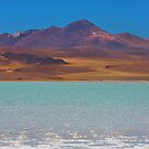 Atacama Salt Lake by Dave Hare