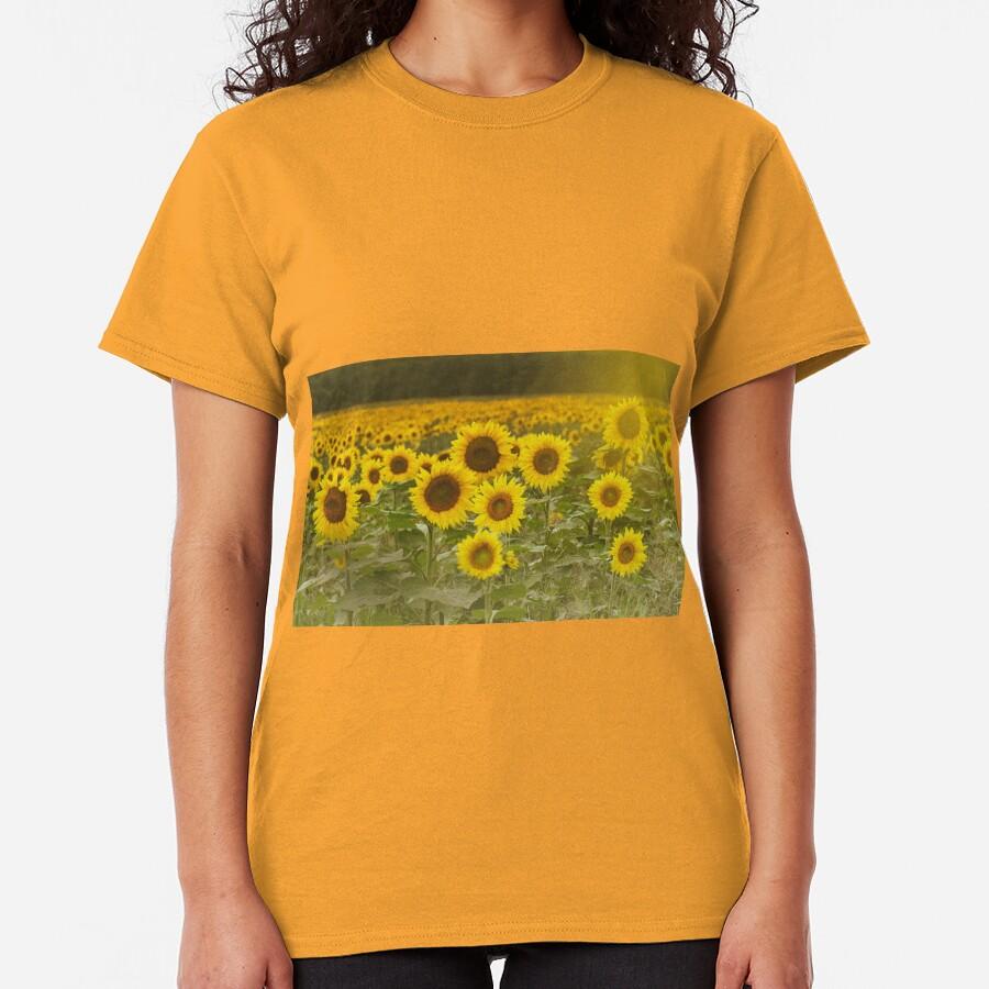 Sunlit field of Sunflowers Classic T-Shirt