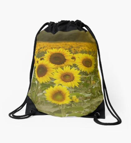 Sunlit field of Sunflowers Drawstring Bag