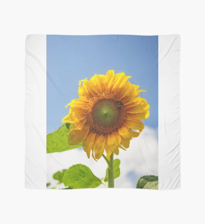 A busy bee on a Sunflower Scarf