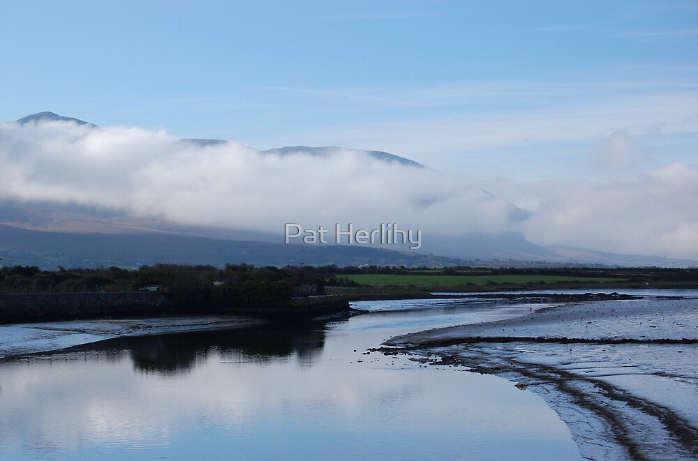Morning Mist by Pat Herlihy