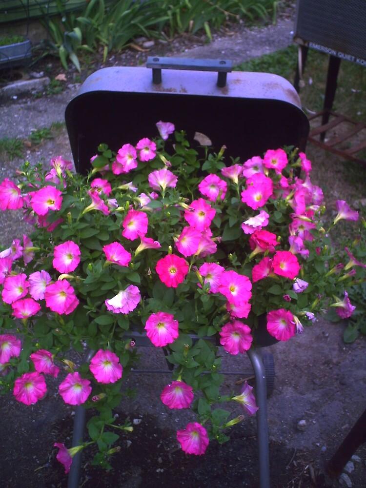 Petunias by grannyjune