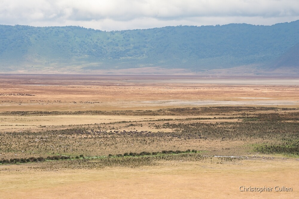 Ngorogoro Crater #7 by Christopher Cullen