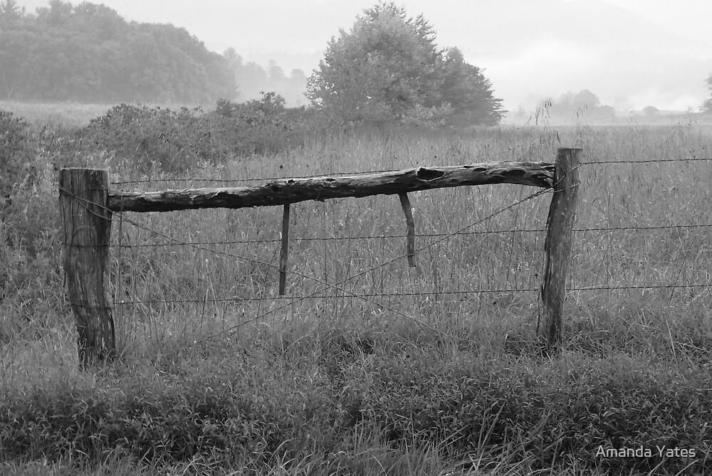 gated by Amanda Yates