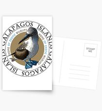 Galapagos Islands Blue footed Booby Postcards