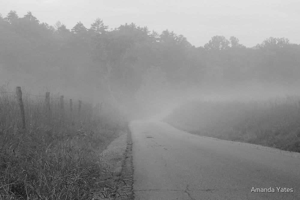 road to nowhere by Amanda Yates