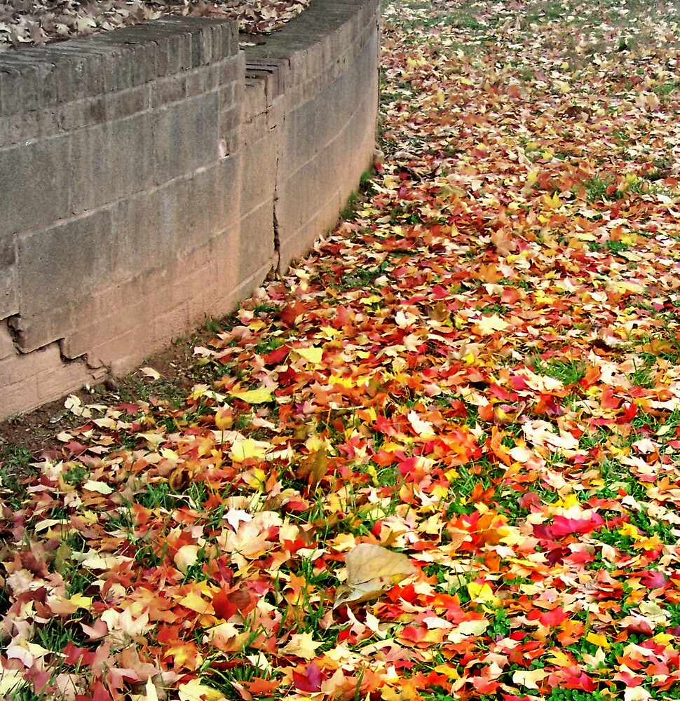 Wall in Fall by Kelsey Williams