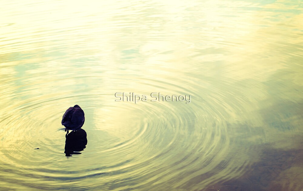 at peace by Shilpa Shenoy