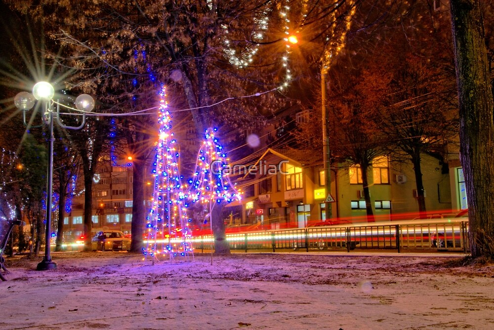 Lights in night by CameliaC
