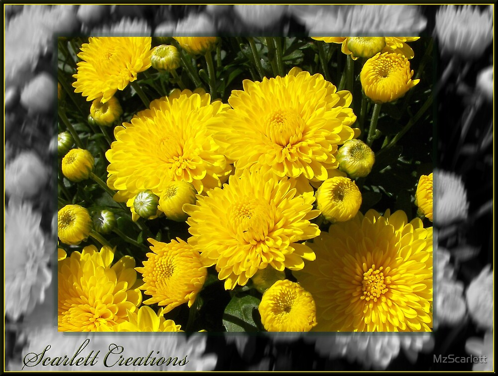 Mums The Word by MzScarlett