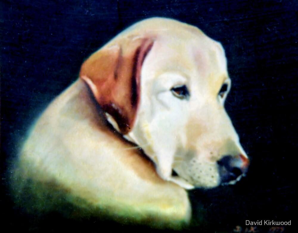Labrador by David Kirkwood