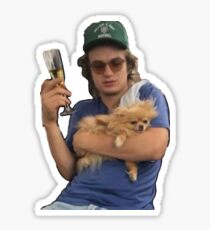 joe keery (ft. dog) Sticker