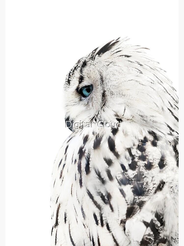 White owl print, polar bird Scandinavian art by nth4ka