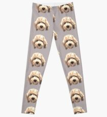 Lucky Labradoodle Face ~ Golden Leggings