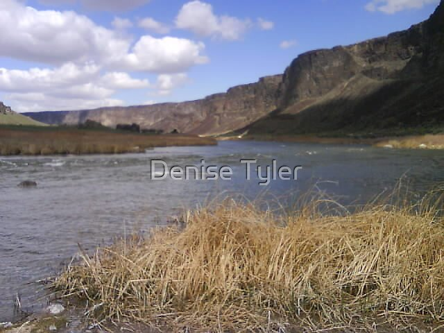 Untitled by Denise Tyler