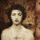 Wallflower by Aimee Stewart