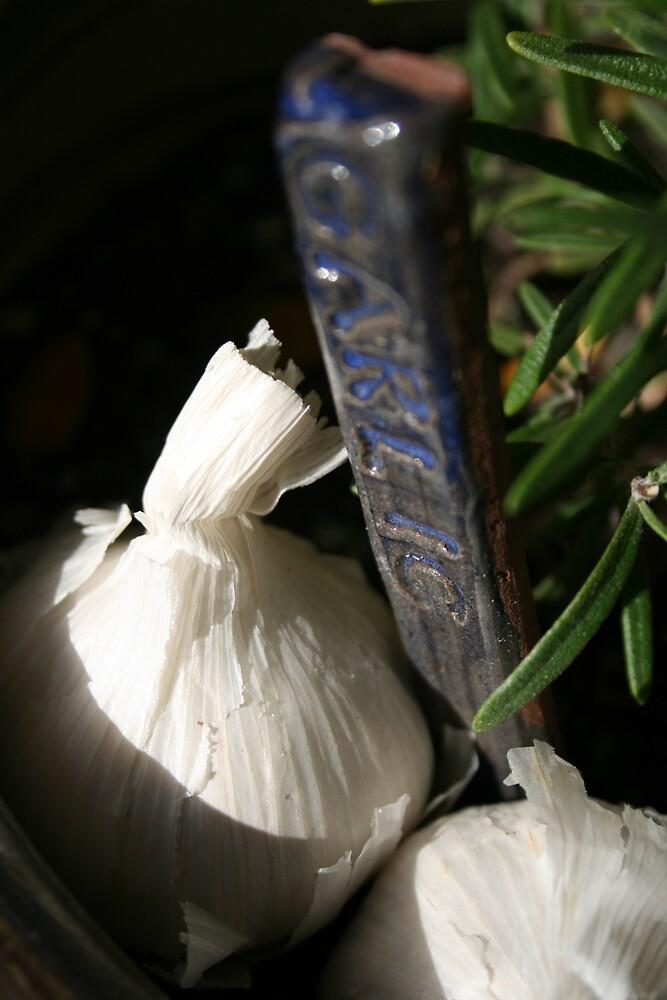 Garden Garlic by SpringLupin