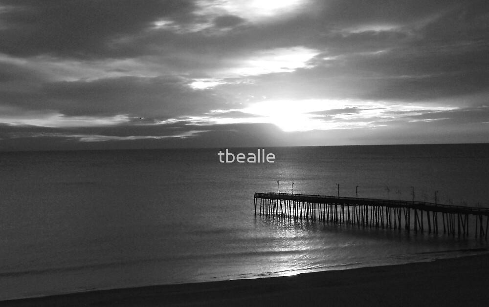 Pier Silouette by Terri~Lynn Bealle