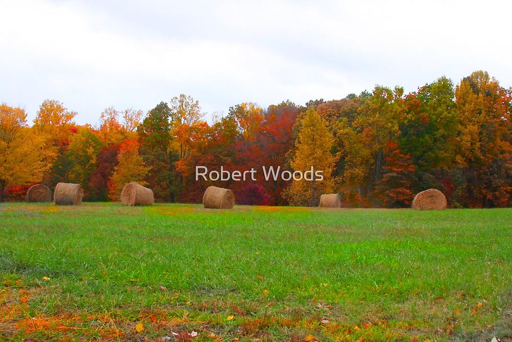 Hay's in by Robert Woods
