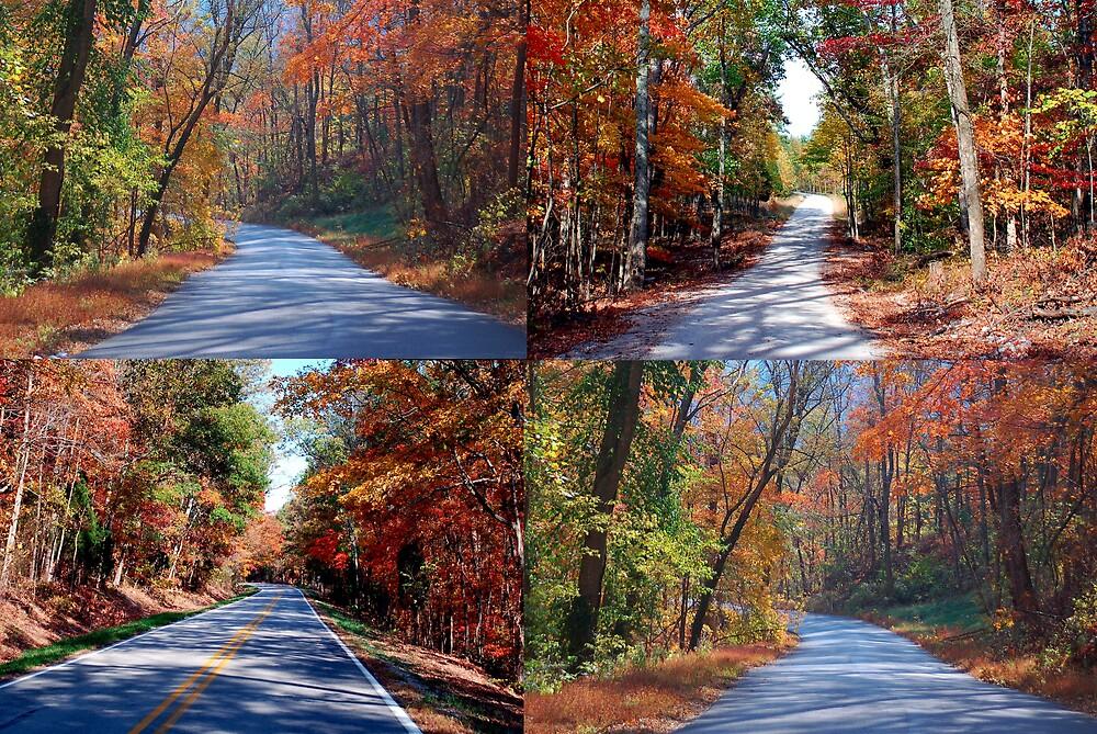 Kentucky Fall Colors by kentuckyblueman