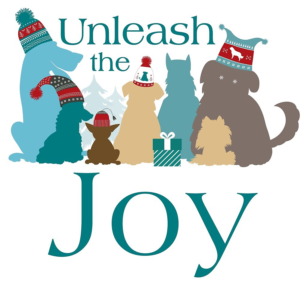 Unleash the Joy! by Christine Mullis