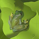 Green Glass Tree Frog by Michelle Bocklage