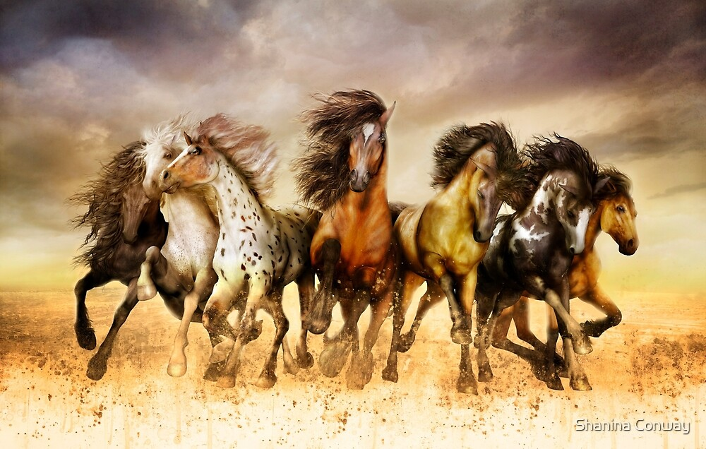Quot Magnificent Seven Galloping Horses Full Color Quot By