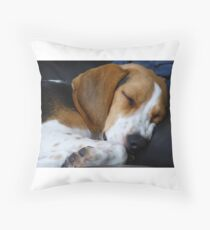 beagle sleeping Throw Pillow