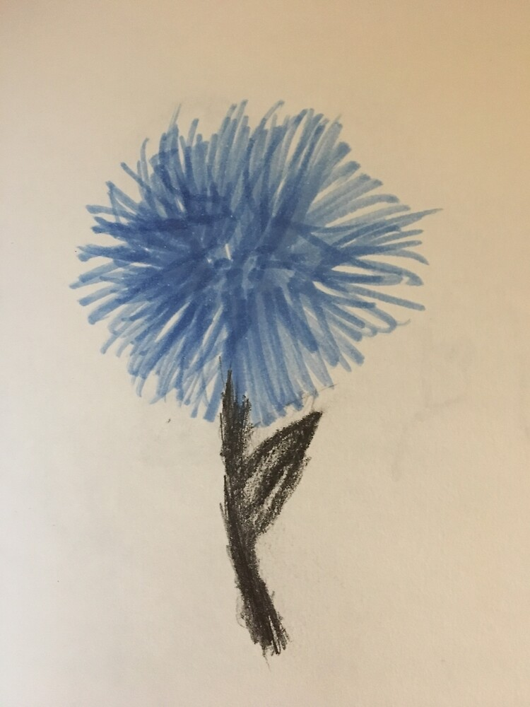 Flower of hope by Olivershome