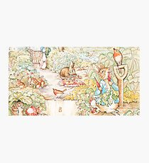 The World Of Beatrix Potter large vintage illustration Photographic Print