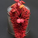 I Can : Passion, Red Mushrooms on a Tin Can by Stephanie KILGAST