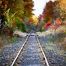Train tracks in the fall color by Jeff Hathaway