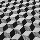 Illusion by Thaddeus Zajdowicz
