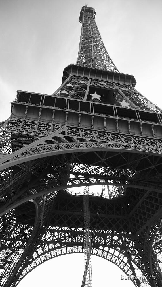Tour Eiffel Oct 08 BW by bambam775