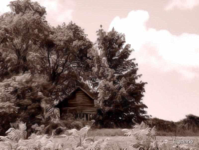Brown Barn by lilymarie