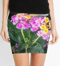 Cabbage Moth on Lantana Mini Skirt