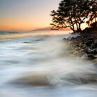 Alone against the Tides by DawsonImages