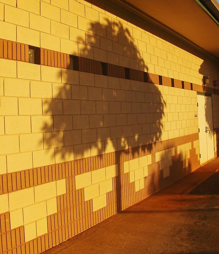Shadow Tree by Barbara Morrison