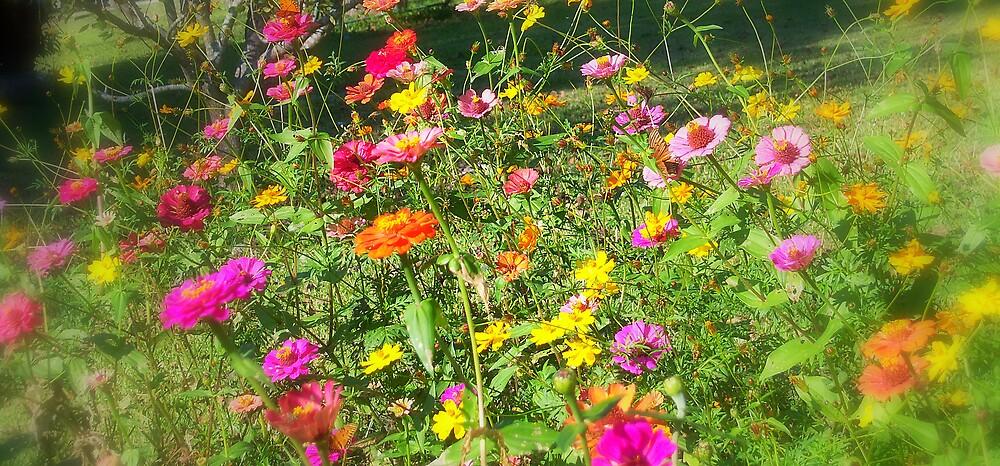 Butterfly Bouquet by DottieDees